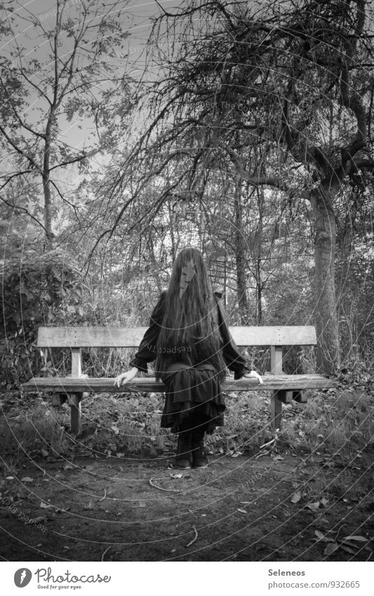 doll Mensch Frau Natur Pflanze Baum Umwelt Erwachsene Herbst feminin Haare & Frisuren Garten Park Angst sitzen gruselig langhaarig