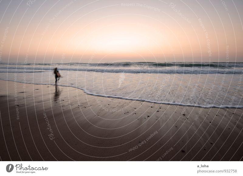 sunset surfer Lifestyle Wassersport Mensch 1 Umwelt Natur Urelemente Sand Wolkenloser Himmel Sonnenaufgang Sonnenuntergang Sommer Schönes Wetter Wellen Küste