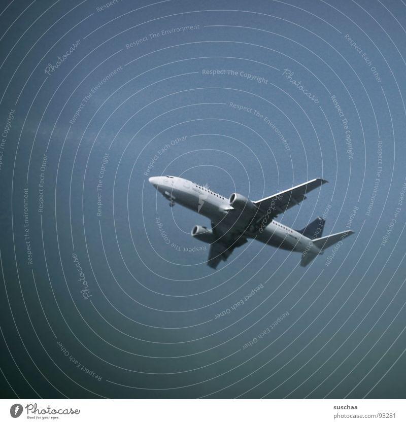 .. schau, da fliegt er schon... Himmel Ferien & Urlaub & Reisen Flugzeug Beginn Flughafen Frankfurt am Main Fernweh Landebahn Ankunft Heimweh