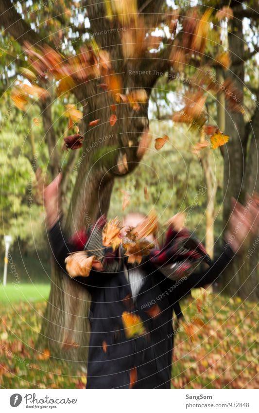 Herbstrauschen Mensch Natur grün Baum Blatt Mädchen Freude gelb Bewegung feminin braun fliegen Park orange Ausflug