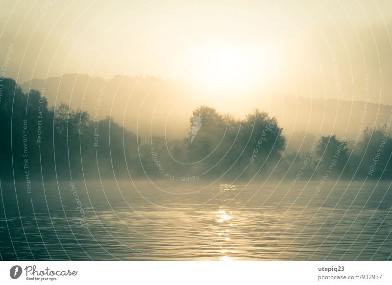 Morgennebel am Fluss Natur Landschaft Wasser Sonnenaufgang Sonnenuntergang Sonnenlicht Nebel Flussufer braun gelb gold silber Kraft friedlich träumen Einsamkeit