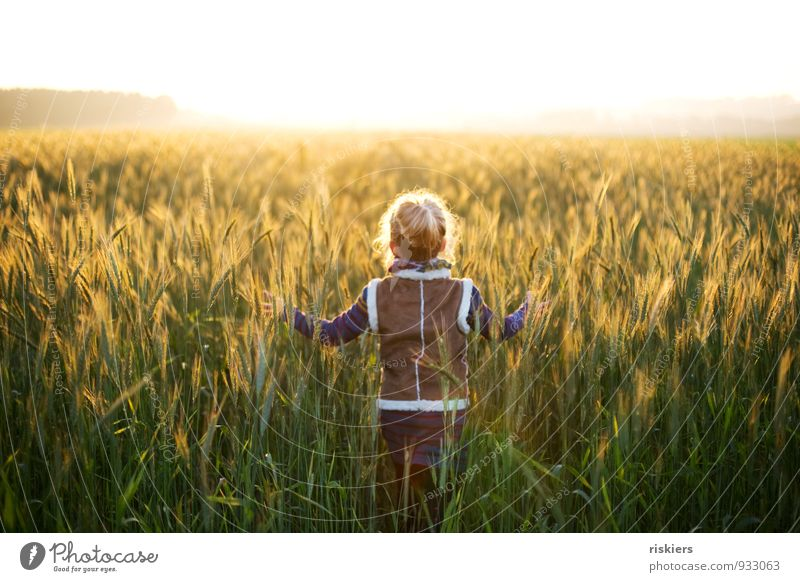 leuchtende tage Mensch Kind Natur Erholung ruhig Mädchen Umwelt Herbst feminin natürlich Glück träumen Feld Idylle Kraft Nebel