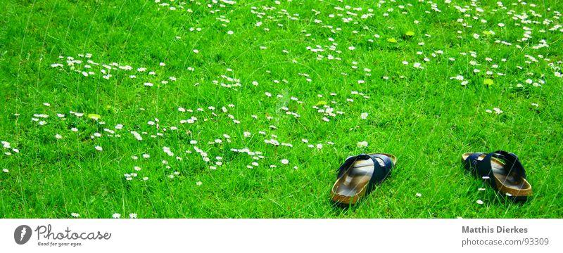 PANTOFFELN grün Sommer Freude Ferien & Urlaub & Reisen Erholung Wiese Garten Freiheit träumen Freundschaft Schuhe Freizeit & Hobby Gänseblümchen Hausschuhe faulenzen