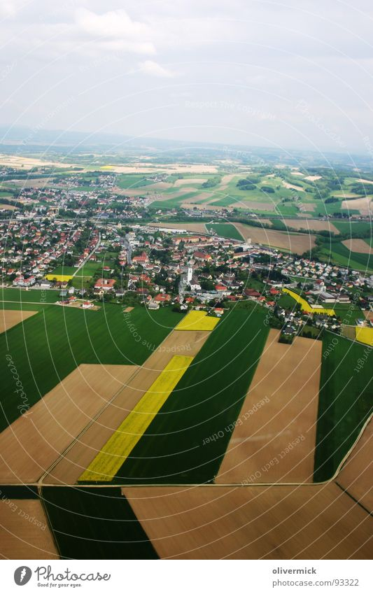 überflug Natur grün Stadt Haus braun Feld Vogelperspektive Raps