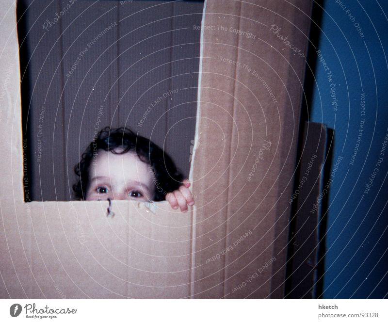 Kuckuck ! Kind Freude Neugier verstecken Kleinkind Karton Versteck