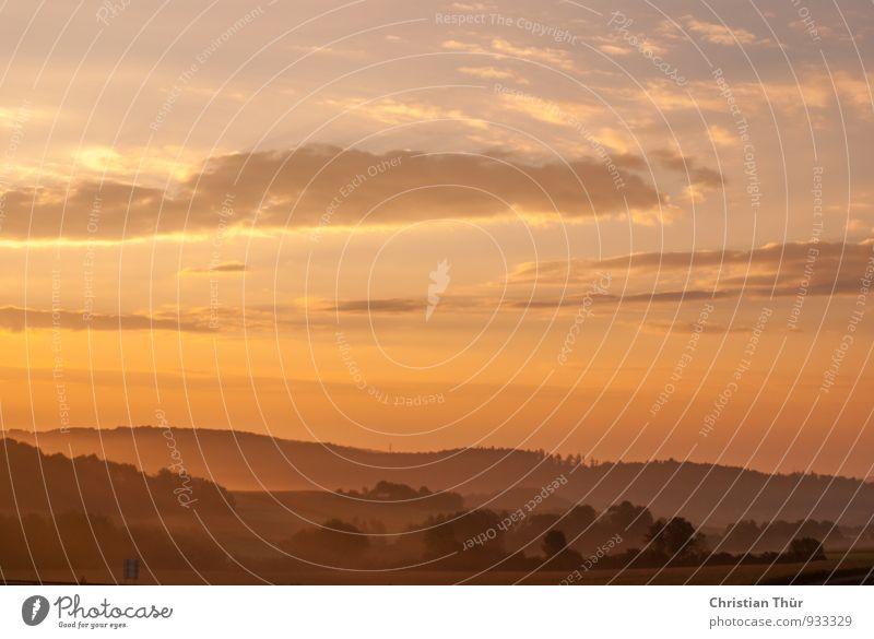 Morgengruss im Spätsommer Natur Ferien & Urlaub & Reisen Sonne Baum Erholung Landschaft ruhig Wolken Ferne Wald Umwelt Herbst Gras Freiheit Lifestyle Feld