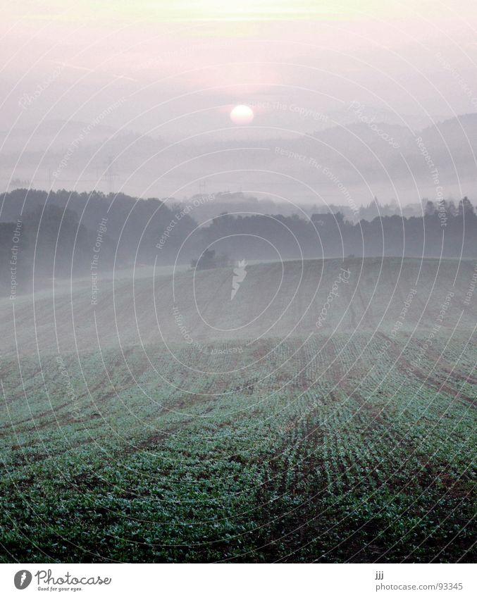 tschechischer morgennebel Sonne Landschaft Kraft Feld Nebel Europa Hügel Furche Tal aufwachen Morgennebel Tschechien