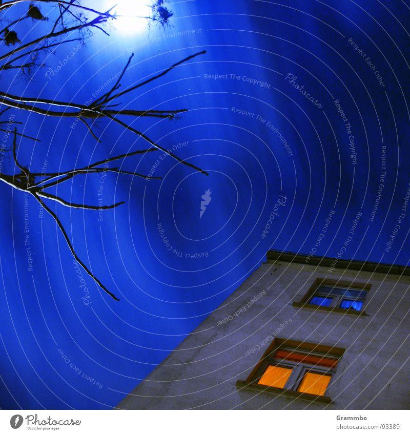 Hexenbesen auf 10 Uhr Himmel blau Haus Wolken kalt Wand Fenster orange Mond Magdeburg
