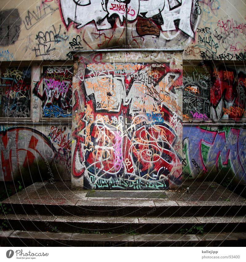 türtarnung Natur Stadt Farbe Tier Umwelt Fenster Berlin Kunst Dach Bildung Schüler chaotisch Krieg DDR Berufsausbildung Lagerhalle