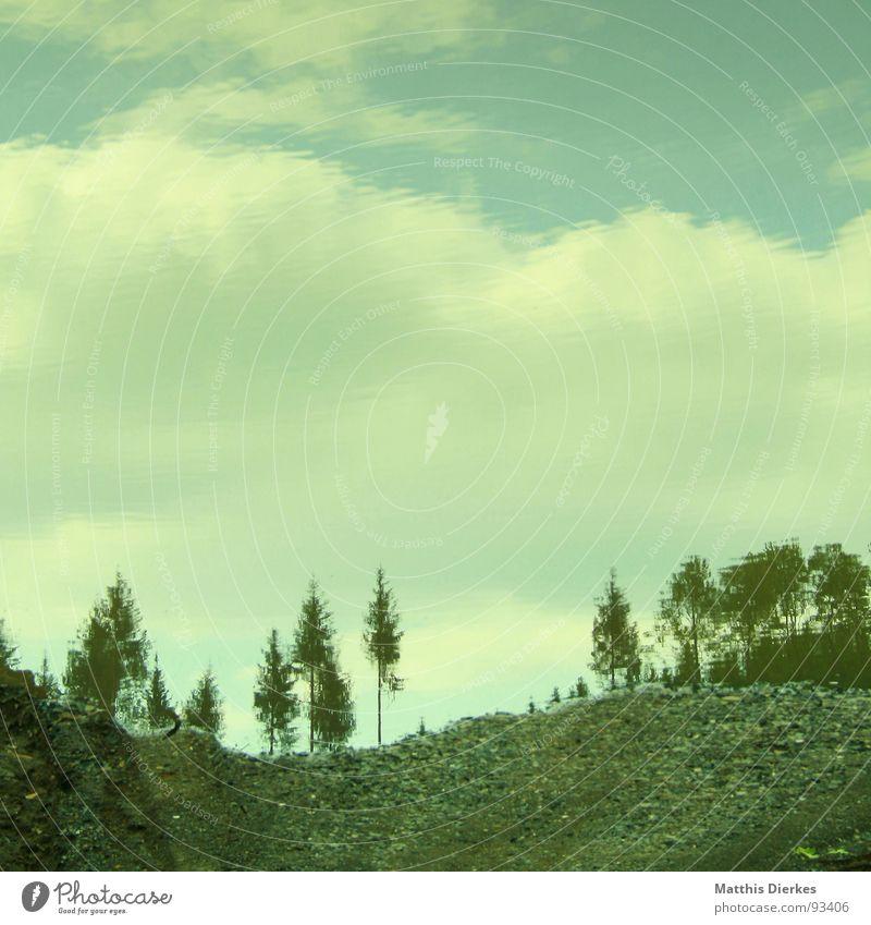 SPIEGEL WALD Wald Pfütze Reflexion & Spiegelung Baum Wolken Fichte trist kalt Ferne Orkan Kyrill Sturm Schlamm Sauerland Schaden Kies Arnsberg Sommer blau karg