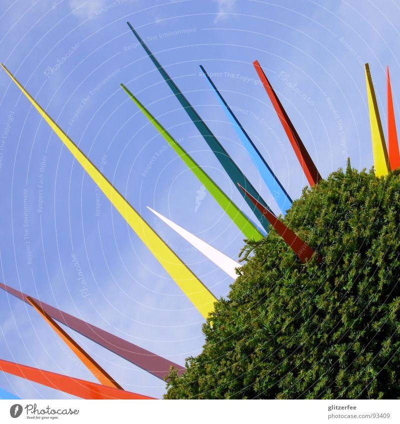 mein kleiner knallbunter kaktus Himmel Baum grün blau Ferien & Urlaub & Reisen Frühling Garten Park Kunst Sträucher Messe Ausstellung Fee Stachel Feiertag Hecke