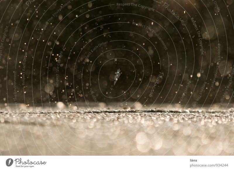 skyfall Umwelt Natur Wasser Wassertropfen schlechtes Wetter Regen fallen leuchten glänzend nachhaltig Geschwindigkeit Vergänglichkeit Niederschlag nass Tropfen