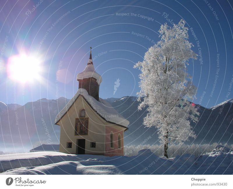 Eiskalte Heiligkeit Winter weiß strahlend Gegenlicht Baum Europa Österreich Hintergrundbild demütig Außenaufnahme Landschaft Vertrauen blau Natur Schnee Sonne
