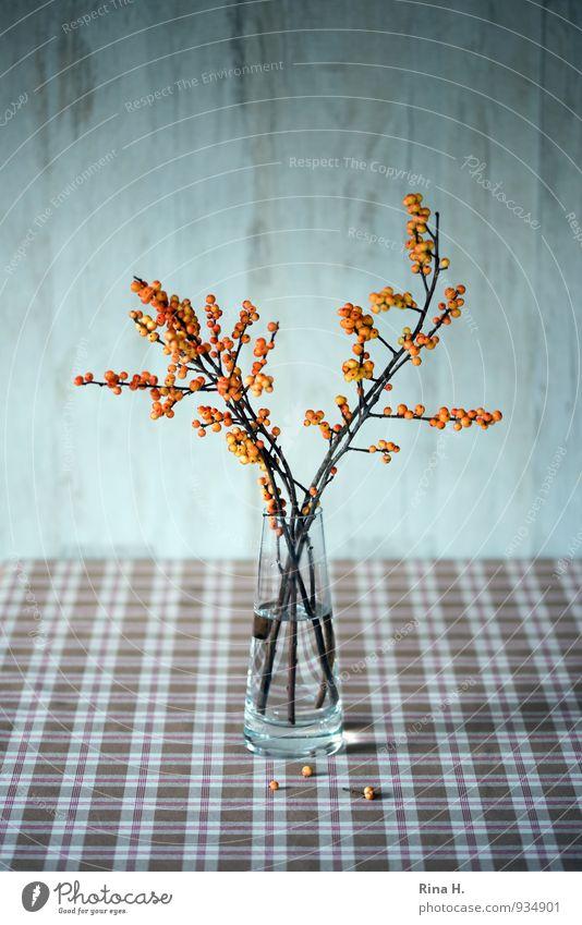 HerbstStill ästhetisch braun orange Stillleben Ilex Glasvase kariert herbstlich Beeren Innenaufnahme Menschenleer Textfreiraum oben Schwache Tiefenschärfe