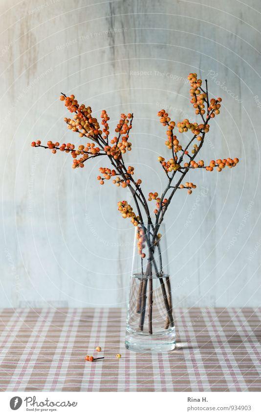 HerbstStill II braun orange Stillleben Tischwäsche Vase Ilex Beerenfruchtstand