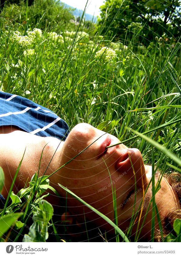 die Sonne genießen... grün Sommer ruhig Erholung Wiese Gras genießen