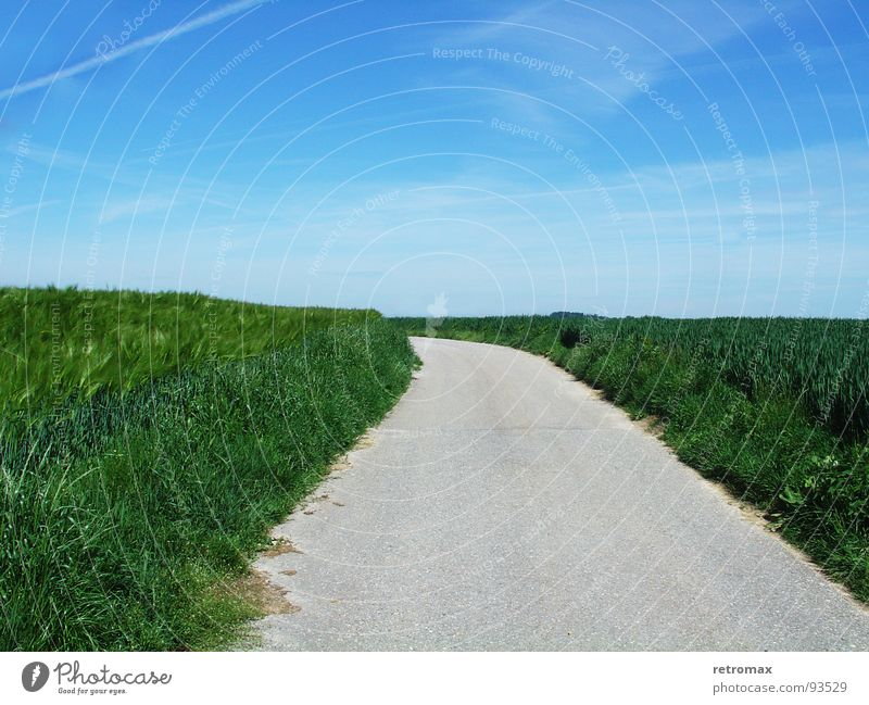 jetzt gehts nach links Natur Himmel grün blau ruhig Straße Erholung Wiese Frühling Freiheit Wege & Pfade Landschaft hell Feld Horizont Asphalt