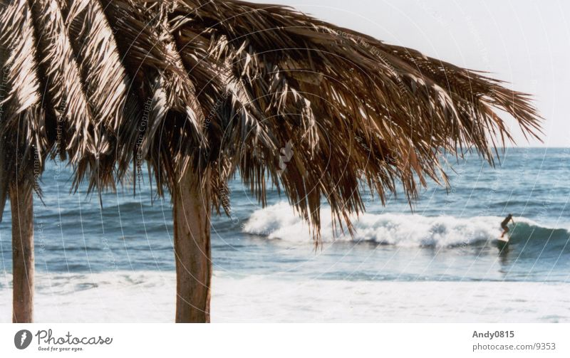 FINDE SURFER Meer blau Strand Ferien & Urlaub & Reisen Kuba Surfer Kalifornien