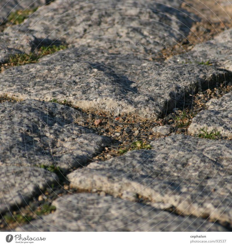 Geh Weg unten hart Detailaufnahme Stein Erde dreckig Bodenbelag Nahaufnahme Makroaufnahme Pflastersteine