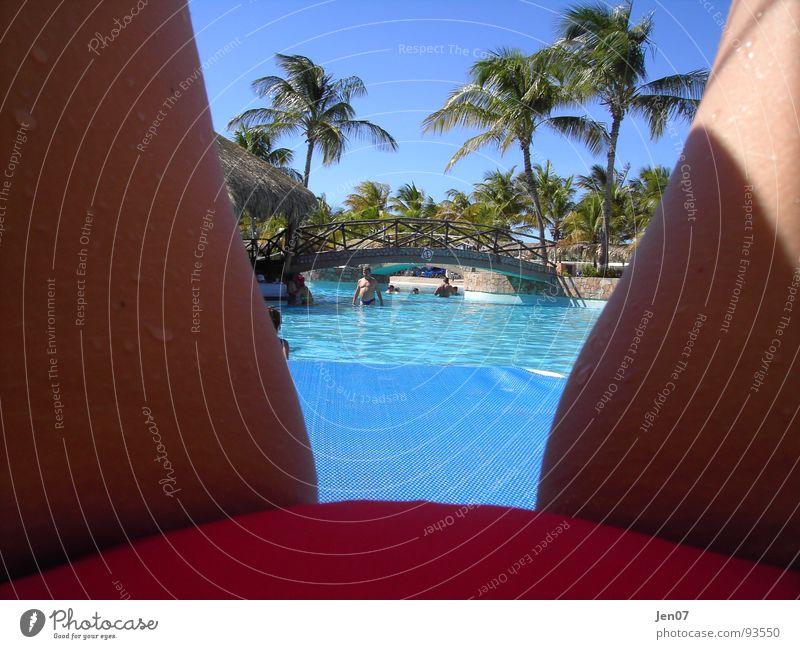 Venezuela die erste.... Sommer Erholung Ferien & Urlaub & Reisen Palme Freude Zufriedenheit chilling Paradies