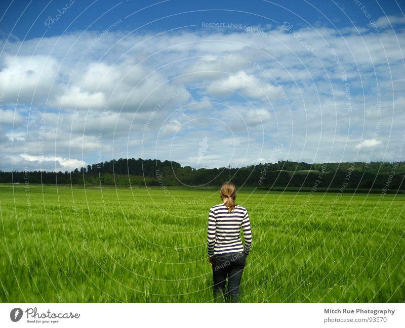 Born to be FREE  1 Natur schön Himmel grün blau ruhig Wolken Ferne Wiese Gefühle Gras Frühling Freiheit Glück Traurigkeit Zufriedenheit