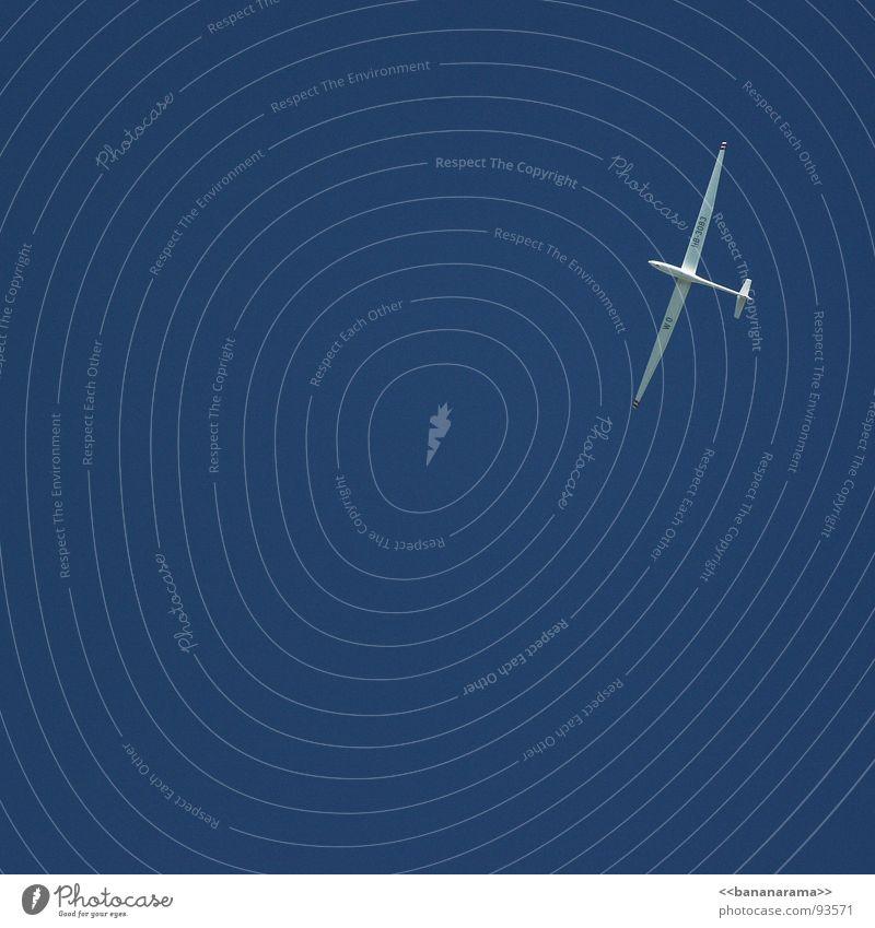 Segelflieger weiß Flugzeug Himmel Horizont Schweben Vogel Luft Sommer schön Segeln gleiten Freizeit & Hobby blau Segelfliegen Sky Aufwind Wetter oben