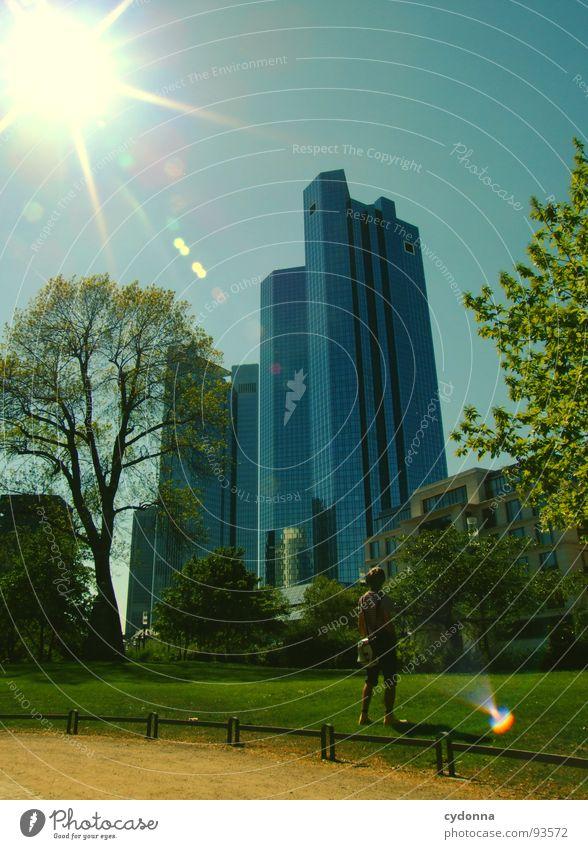 Frankfurt a.M. Mensch Mann Himmel Baum Sonne Stadt Ferne Wiese Garten Park Business Architektur Erfolg Hochhaus Macht Bank