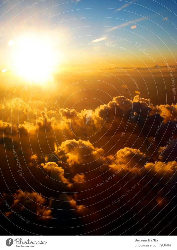 Zwischen Himmel und Hölle Außenaufnahme Freiheit Sonne Luftverkehr Wolken Flugzeug Unendlichkeit blau orange