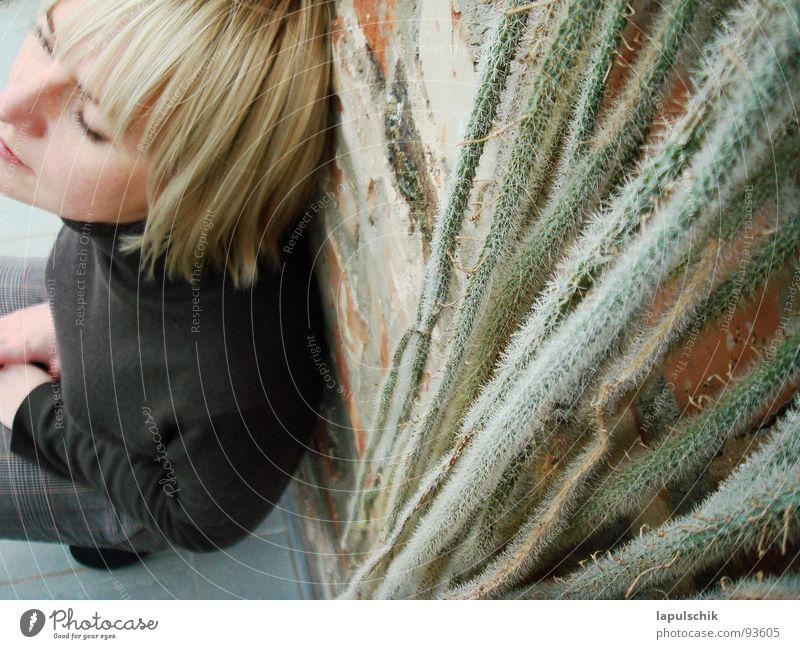 relax Frau Pflanze ruhig Erholung Wand Glück Mauer Denken Zufriedenheit modern Backstein Kaktus