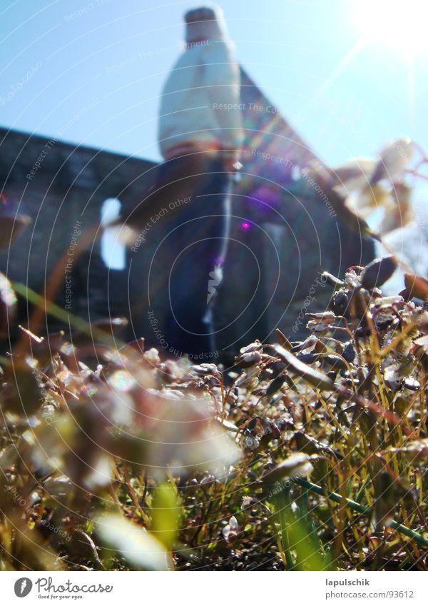 fruehling Mensch Himmel Sonne Blume Wärme Frühling Freiheit Glück Gotteshäuser
