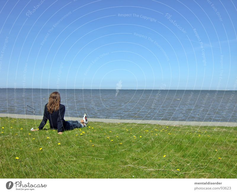 sehnsucht Meer Erholung Sehnsucht Gras grün Frau Suche finden Horizont Ferne Freizeit & Hobby Gefühle starnd Wasser Sand Rasen blau sitzen Blick