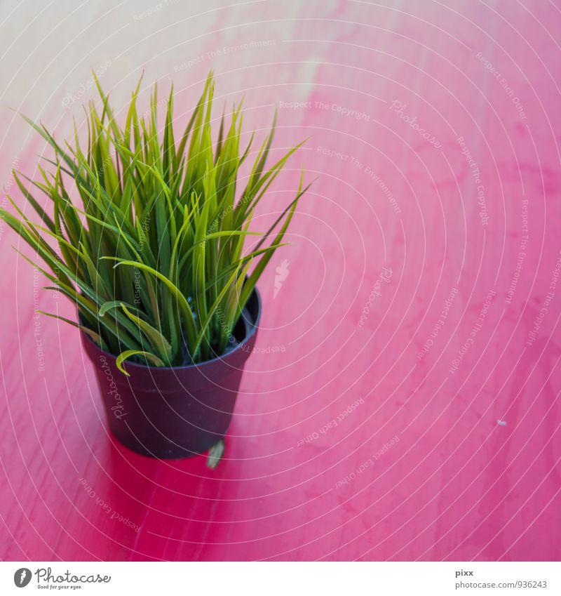 AST7 Pott | weltkulturerbe Ausflug Sightseeing Tisch Computer Pflanze Schönes Wetter Gras Grünpflanze Topfpflanze Kitsch Krimskrams Kunststoff Essen