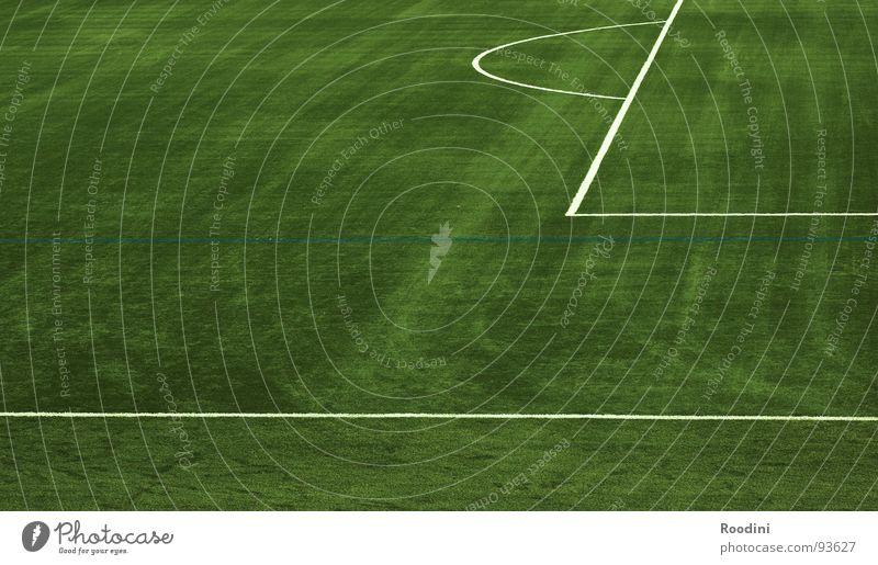 Die Saison ist gelaufen... grün Wiese Sport Spielen Linie Feld Fußball Platz leer Ball Rasen einzeln Spielfeld Grenze Fan Stadion