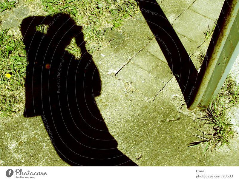 sich krumm machen für ne blöde laterne Schatten Wiese Verkehrswege Wege & Pfade Beton Stahl beobachten Fotografieren Laterne Löwenzahn Grasbüschel gekrümmt