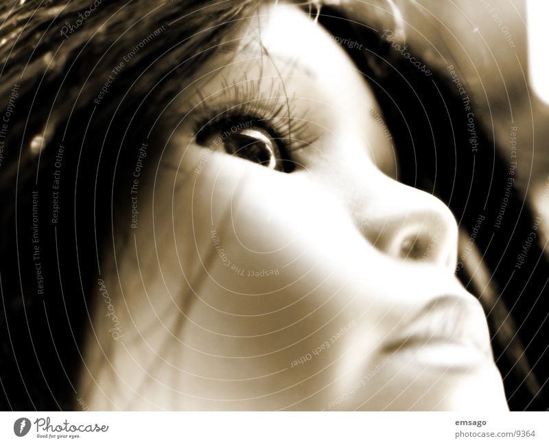 porzelan schoenheit 2 Nahaufnahme Silhouette Makroaufnahme Frau Puppe Gesicht Auge Profil Sepia porzelanpuppe