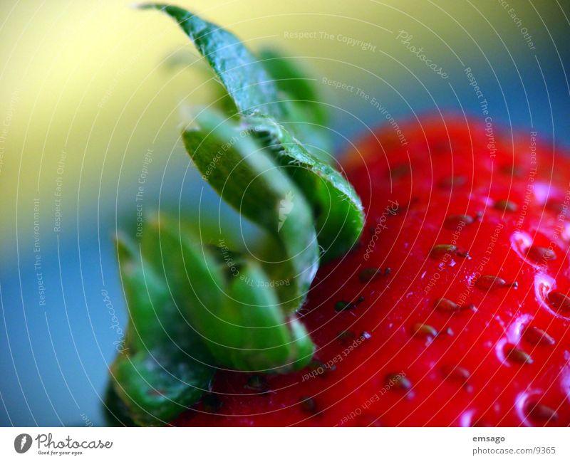 Wer will mich :) Banane Makroaufnahme Nahaufnahme Gesundheit Erdbeeren Frucht Farbe blur