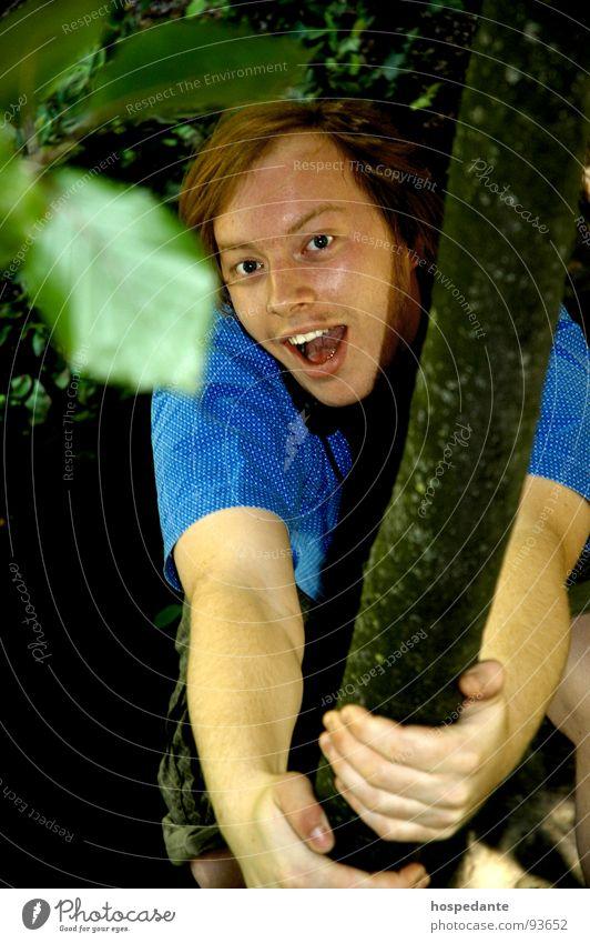In the jungle Baum Kletterbaum Geäst Blatt Klettern Ast Freude Jugendliche Ein junger erwachsener Mann einzeln 1 1 Mensch Blick in die Kamera Spielen