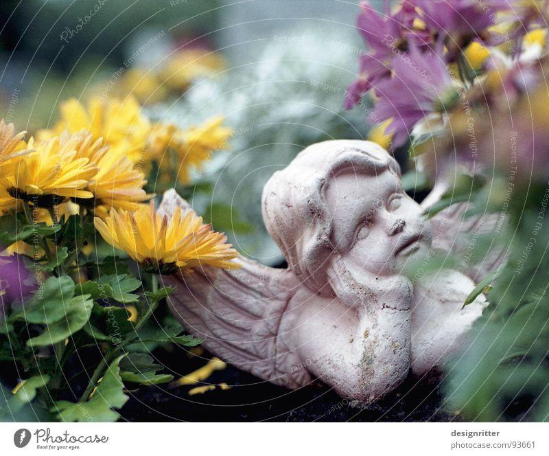 Schlaf gut Grab Friedhof schlafen Angelrute Vergänglichkeit Engel Kitsch Tod grave graveyard die dead death sleep