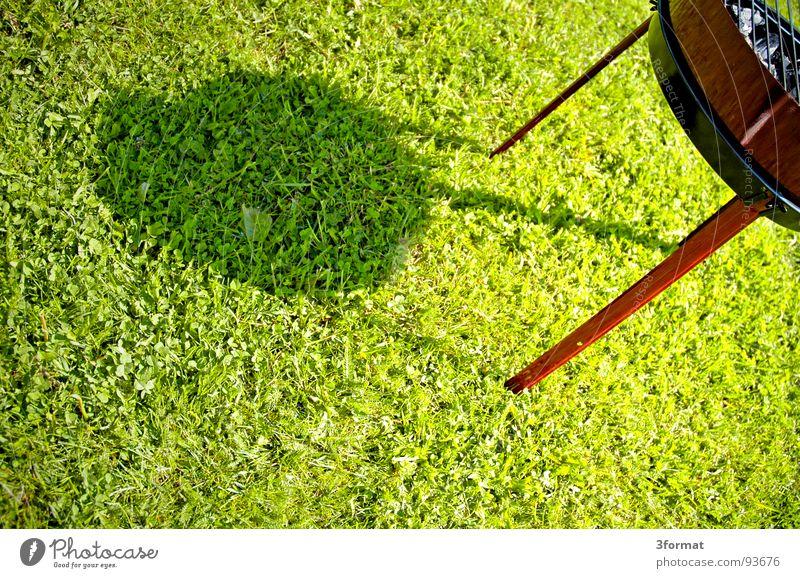 maennertag Picknick Grillen Bratwurst Sommer Ferien & Urlaub & Reisen Freizeit & Hobby Sonntag Feiertag Vatertag Nachmittag Mittag Wiese grün heiß Glut Gras