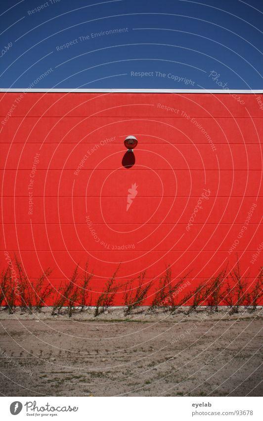 250 :-D (91000) grün blau Pflanze rot Haus Farbe Lampe Wand Gebäude Sand Beton geschlossen leer Industrie Sicherheit modern