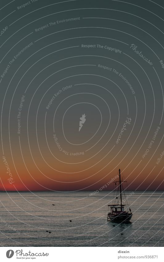 Morgengrauen Ferien & Urlaub & Reisen Tourismus Ausflug Abenteuer Ferne Freiheit Sommer Sommerurlaub Meer Umwelt Natur Wasser Himmel Wolkenloser Himmel Klima