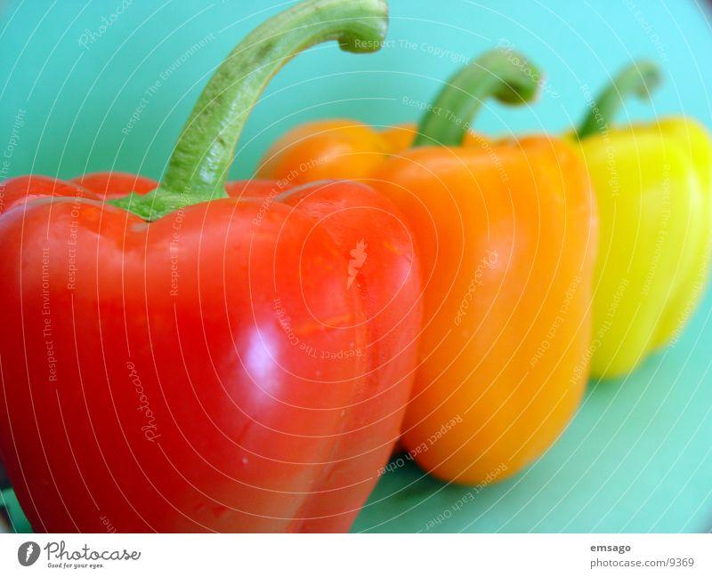 paprika parade rot gelb orange Gesundheit Stengel Gemüse Paprika