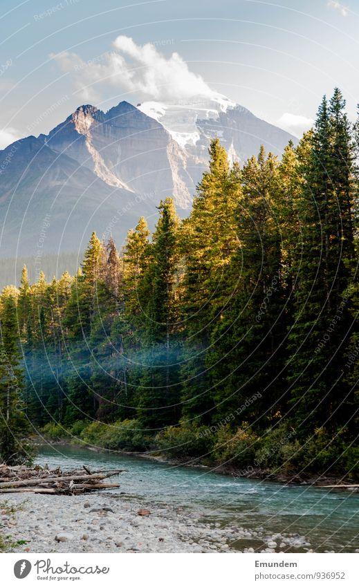 Jasper Umwelt Natur Landschaft Wasser Himmel Wolken Sommer Herbst Schönes Wetter Baum Wald Bach Fluss Kanada Amerika Abenteuer Erholung Ferien & Urlaub & Reisen