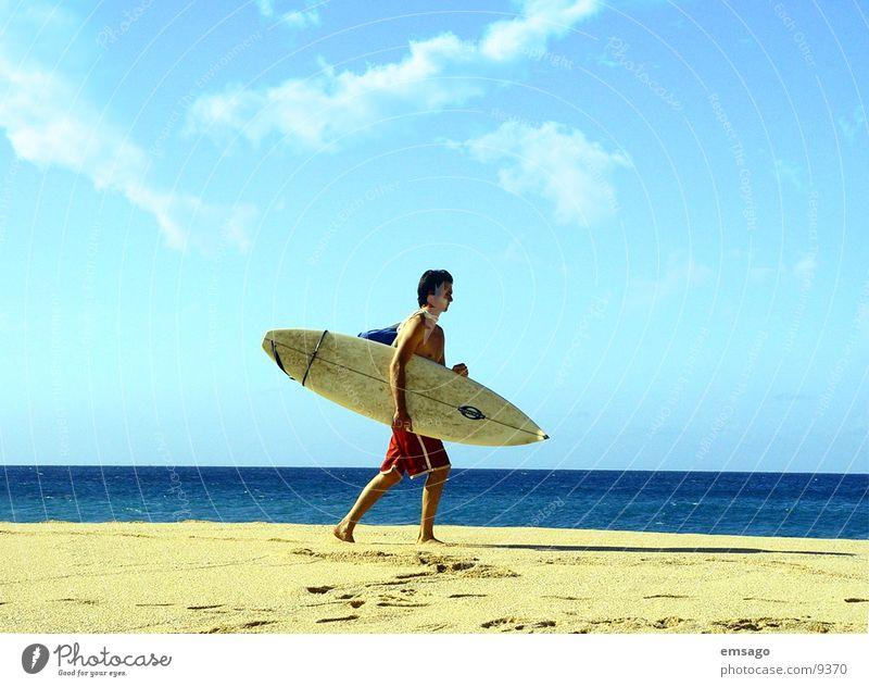 Surfer Himmel Meer Strand Horizont Surfen Surfer Hawaii Surfbrett Extremsport