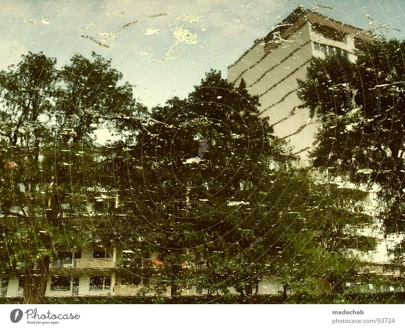 UNFORGETTABLE Natur Wasser Baum Stadt Haus Gebäude nass Hochhaus Fassade Frieden Vergänglichkeit Idylle Flüssigkeit Gemälde Surrealismus
