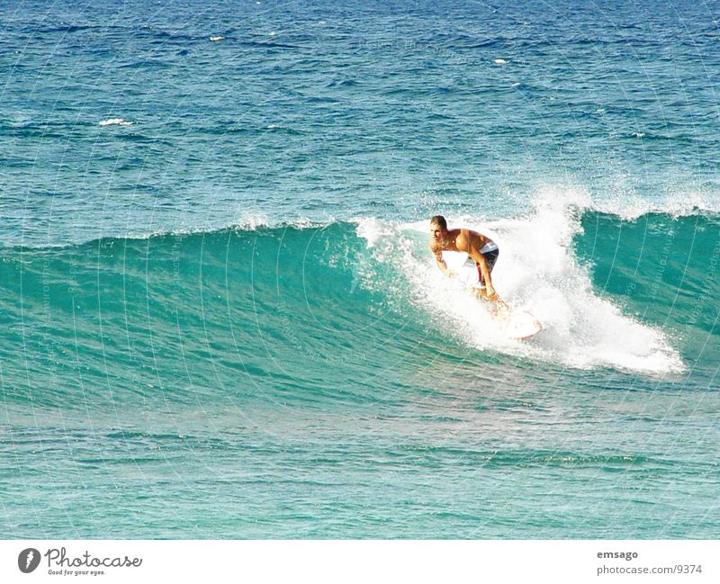 Wellenreiter Meer Wellen Surfen Surfer Hawaii Extremsport