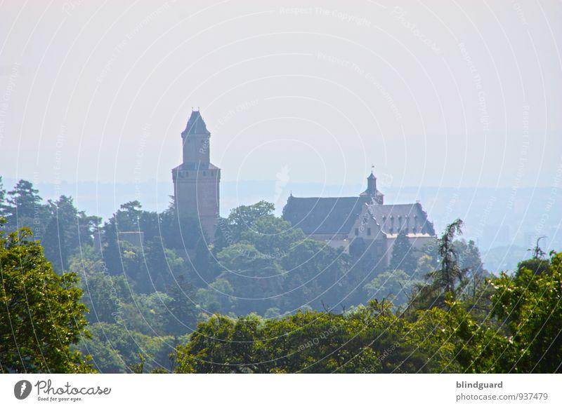 Castles and Dreams Himmel alt Sommer Baum Landschaft Ferne Wald Ausflug Schönes Wetter Kultur Turm Hügel Burg oder Schloss Wahrzeichen Sehenswürdigkeit