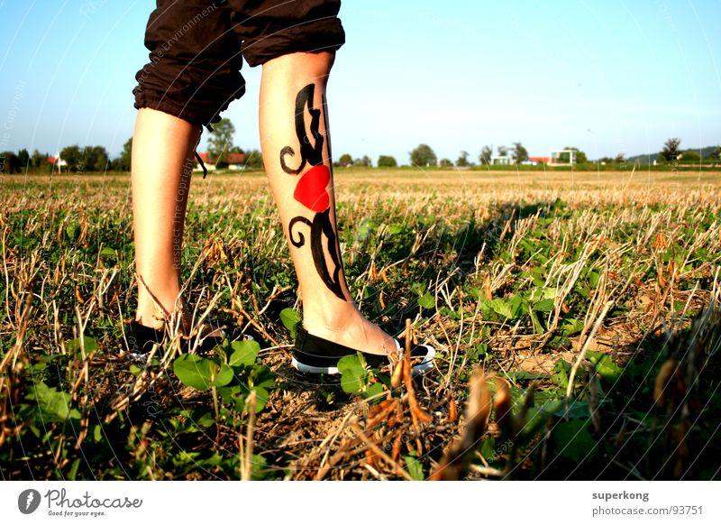Heart Frau Himmel Freude Leben Spielen Fuß Schuhe Beine Feld Vertrauen Entwicklung