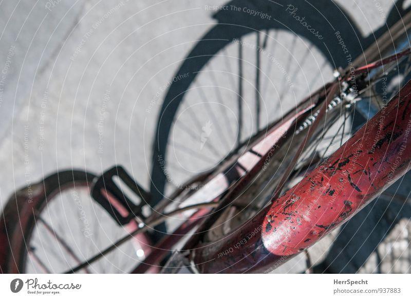 Alter Esel Straße Fahrzeug Fahrrad alt rot verkratzt Lack Schutzblech Schattenspiel Hinterreifen Asphalt Sonnenlicht ehrwürdig Patina Rost Verlässlichkeit