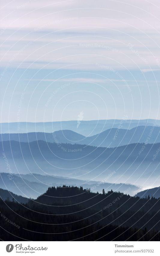 Seelenbalsam | Aus- und Überblick. Natur blau Pflanze weiß Landschaft ruhig Ferne schwarz Wald Umwelt Berge u. Gebirge Herbst Gefühle natürlich außergewöhnlich